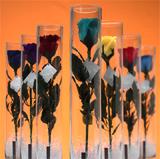 アートフラワー:水鳥の羽根で出来たバラが美しい:ローズインガラスパック♪
