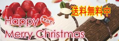 クリスマス送料無料中